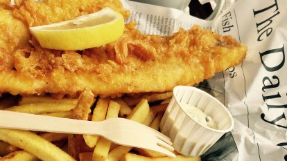 How Perth fish 'n' chip shops can sell endangered shark – with you none the wiser