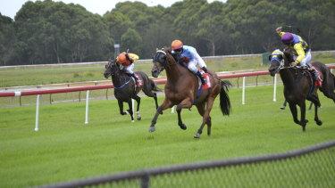 Racing returns to Moruya on Tuesday with a strong eight-race card.