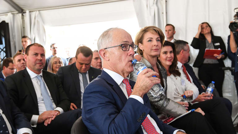 Liberal ministers, including former prime minister Malcolm Turnbull, launched the pilot project in April.