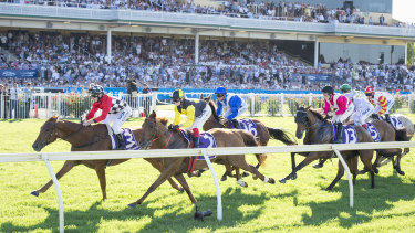Best of the west: The Perth Cup has been running in WA for 131 years, and the 2019 race will be held on January 5.