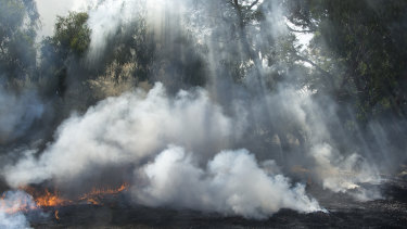 Controlled burns are part of the club's maintenance regime.