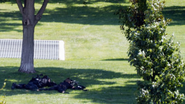 Two police officers with rifles lay near the Library of Congress.