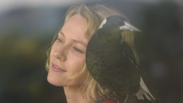 Naomi Watts with magpie in Penguin Bloom.