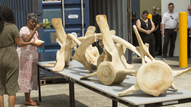 The whale skeleton smoking ceremony at the Queensland Museum facility in Hendra on Tuesday.