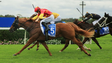 Prime Star is the top selection in the feature Bondi Stakes.