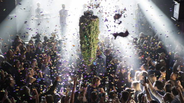 A depiction of a cannabis bud drops from the ceiling at Leafly's countdown party in Toronto, as midnight passes and marks the first day of the legalisation of cannabis across Canada.