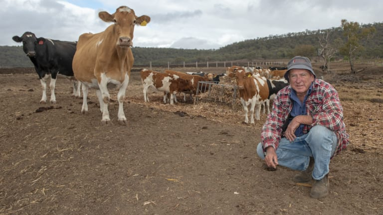 Dairy farmer Brendan Hayden on his drought-stricken property, in Pilton, Queensland (near Toowoomba) in June.
