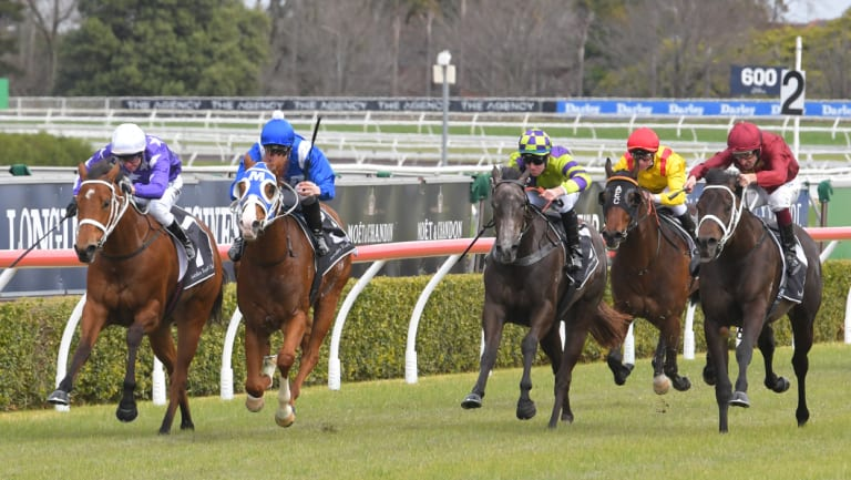 A good track is expected for Randwick's Kensington track on Wednesday.