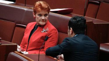 Pauline Hanson and Sam Dastyari at Parliament House in November 2017.