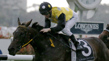 In Her Time won the Sydney Stakes on this day last year and is tipped to take out the main event, The Everest, on Saturday.
