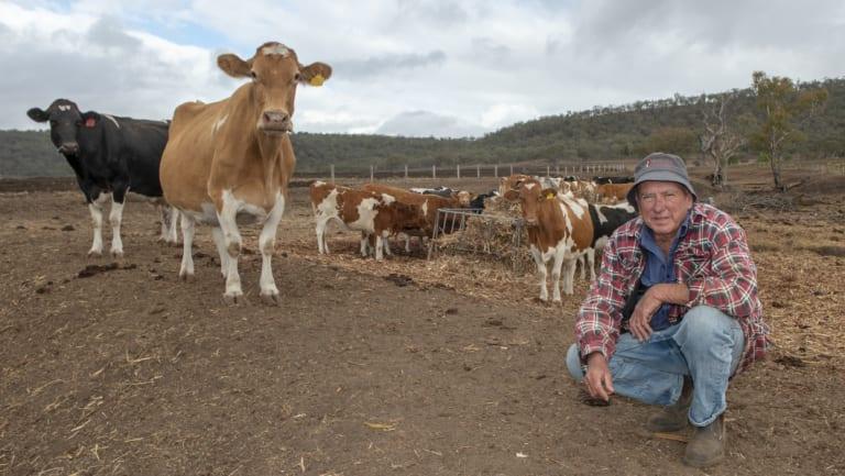 Dairy farmer Brendan Hayden on his drought-stricken property, in Pilton, Queensland (near Toowoomba).