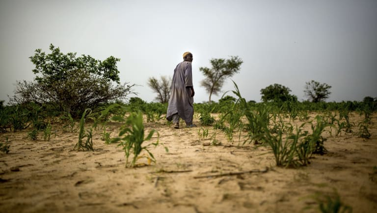 Droughts and unpredictable weather patterns are resulting in tough times for African farmers.