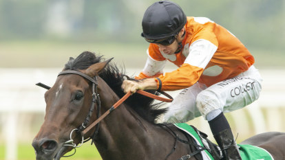 Smith raises stakes after leading lady Lashes strikes again
