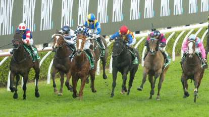 Race-by-race preview and tips for Kensington on Wednesday