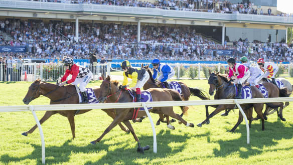 Carnival is over, but raiders gear up for Perth group 1 glory
