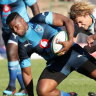 Scrum costs Tahs a game they were good enough to win