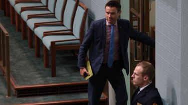 Andrew Laming in Parliament on Wednesday.