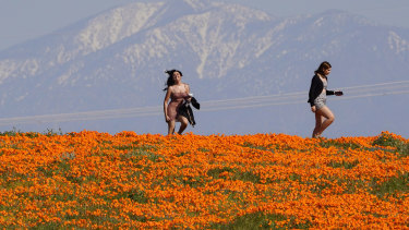 Two women walk through poppy fields during the coronavirus pandemic as snow covered mountains sit in the background in Lancaster, California.