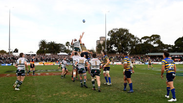 Disparity: More people attended the Shute Shield final at North Sydney Oval than the Waratahs' Super quarter-final.