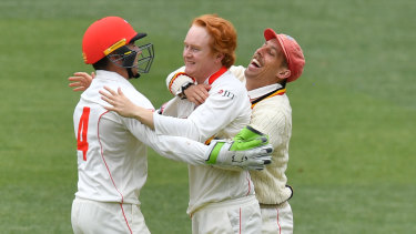 Marginalised: The Sheffield Shield was the envy of world cricket.