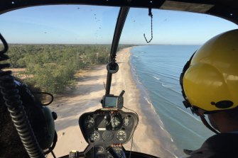 Helicopters scan remote beaches for turtle and predator tracks.