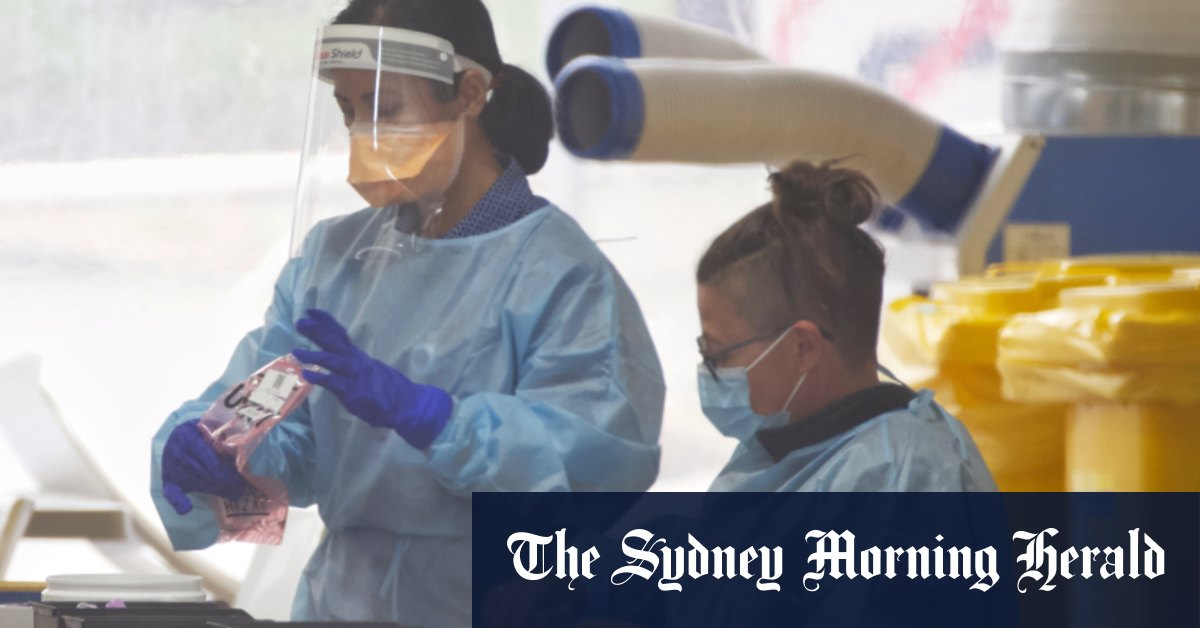 Queensland red zone downgraded as entire Australian Open flight in lockdown after two COVID positive tests – Sydney Morning Herald