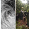 Trees, satellite dishes down after 150km/h winds lash Lord Howe Island