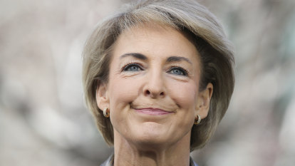 Small business returns to cabinet with appointment of Michaelia Cash