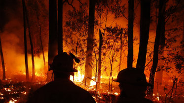 Fires in Mallacoota in East Gippsland this summer.