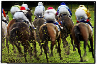 Racing returns to Taree  on Wednesday with a eight-race card.