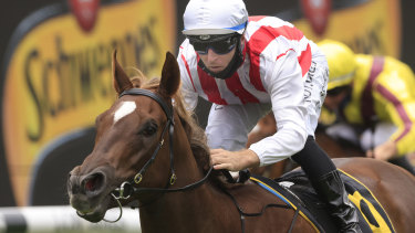 Four Moves Ahead tasted her first defeat in the Golden Slipper.