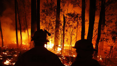 Fires tore through Mallacoota in East Gippsland this summer.