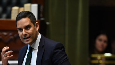 Independent Sydney MP Alex Greenwich speaking against amendments to the abortion decriminalisation bill.