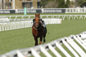 The Everest favourite Nature Strip dumped  jockey James McDonald in a recent  barrier trial and will need to restore the faith of punters in the Premiere Stakes.