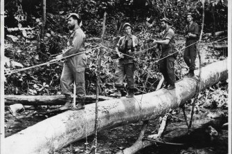 Australian troops searching for terrorists hidden in jungle during the Malaya Emergency in 1960.