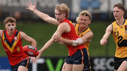 'Clearly right at the top': Horne-Francis firms as North's No.1 draft pick