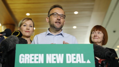 Greens vote to give members voice in leadership election falls short