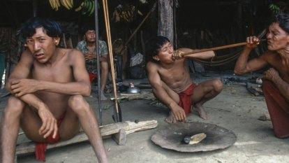 Two Indigenous men killed by illegal gold prospectors in Amazon