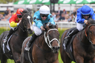Global Quest spears away to win the Breeders' Plate on debut last October
