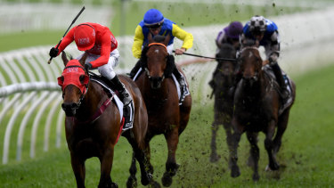 Back to back: Redzel storms home in The Everest at a wet Randwick on Saturday.