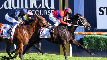 Verry Elleegant beats Anthony Van Dyck in Saturday's Caulfield Cup.