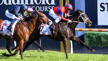 Verry Elleegant holds off Anthony Van Dyck in the drive to the finish in the Caulfield Cup.