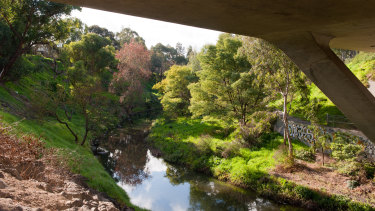 Merri Creek