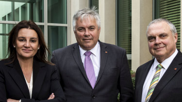 Senators Jacqui Lambie, Rex Patrick and Stirling Griff all support a federal anti-corruption commission but said they had not had discussions with the government about it in months.