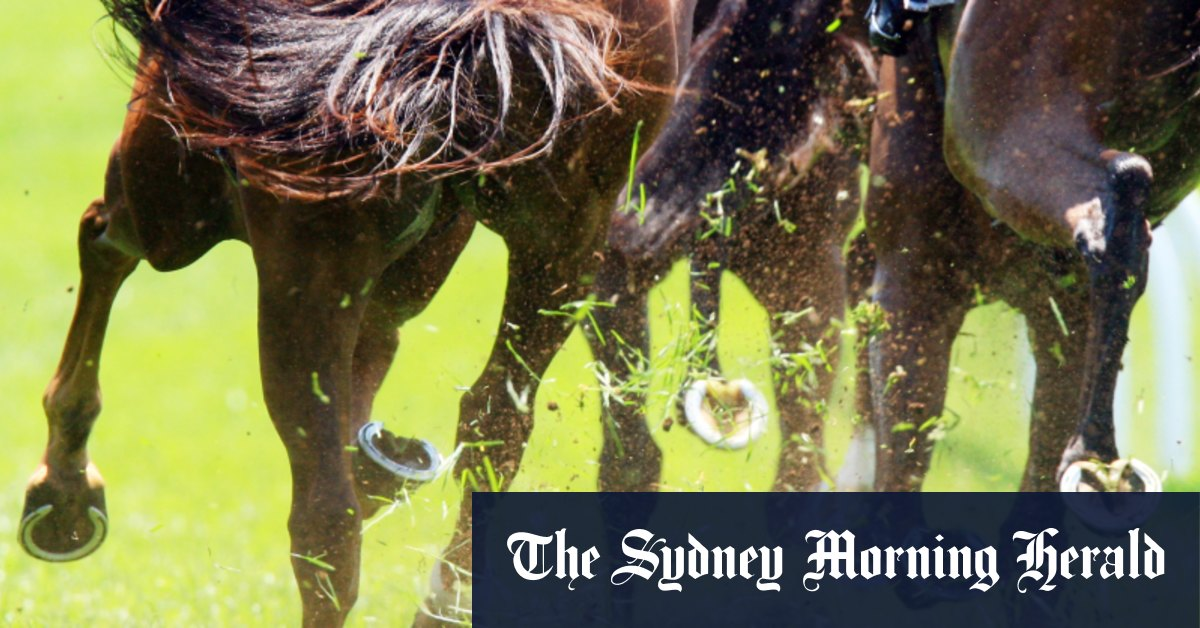 Race-by-race preview and tips for Scone on Friday