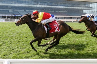 California Zimbol, ridden by Mark Zahra, wins the Alinghi Stakes at Caulfield on Saturday.