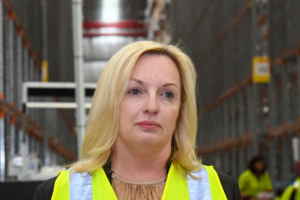 Australia Post chief executive Christine Holgate says the disruption to operations from COVID-19 has been significant.