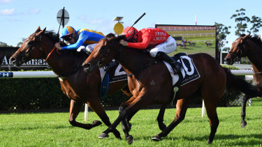 Fast finish: Releem Ruby comes from last to run second to Echo Jet (left) at Warwick Farm on April 17.