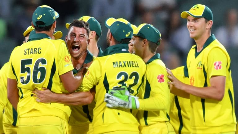 Breakthrough: Marcus Stoinis is mobbed after picking up another wicket in Australia's much-needed win against South Africa in Adelaide.