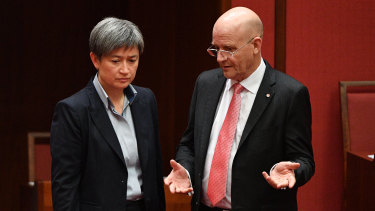 Shadow Minister for Foreign Affairs Penny Wong and Liberal Democratic Party Senator David Leyonhjelm during the debate on the Espionage and Foreign Interference Bill in the Senate chamber at Parliament House in Canberra, Wednesday, June 27, 2018.